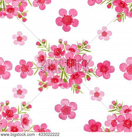 Pink Petals Of Wax Flower Blossom Seamless Pattern Illustration, Watercolor Flora Painting Isolated