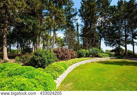 Large green grassy meadow in the center of the park. The magnificent botanical park on the slopes of Mount Carmel. Israel.  Great walk in a clean well-kept park