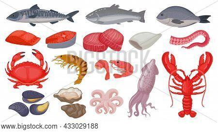 Cartoon Raw Seafood, Fish, Fresh Salmon, Lobster And Squid. Ocean Shrimp, Tuna Steak, Shellfish And
