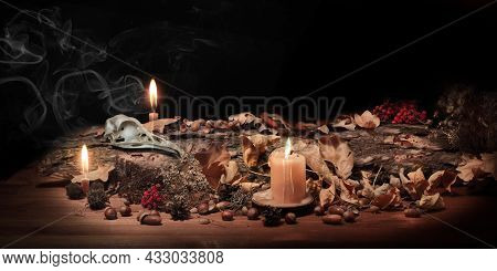 Altar Of Forest Witch. Samhain Pagan Ritual. Birds Skull, Ashberry, Acorns, Dry Herbs, Pine Bark Amo