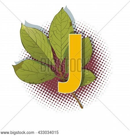 Autumn 3D Pop Art Alphabet - Colorful Bold Letter J