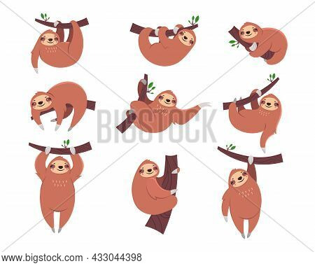 Cute Sloth Cartoon Character Flat Vector Illustrations Set. Collection Of Drawings With Sleepy Anima