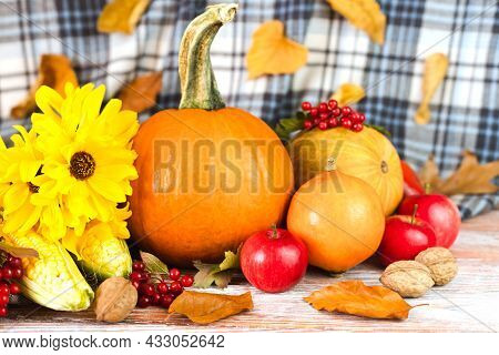 Happy Thanksgiving. Autumn Composition With Pumpkins, Yellow Flowers, Various Vegetables And Autumn