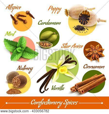 Spices Decorative Icons Set Of Poppy Cardamom Nutmeg Vanilla Isolated Vector Illustration