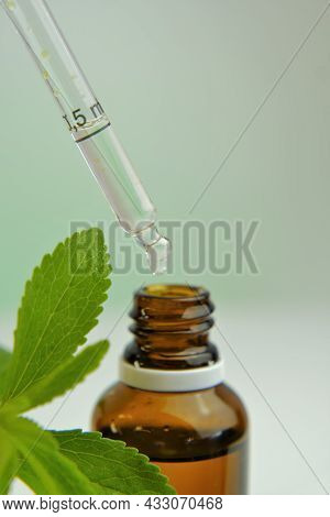 Stevia Rebaudiana Branch And Bottle With Stevia Extract On Blurred Light Background. Stevia Liquid.n