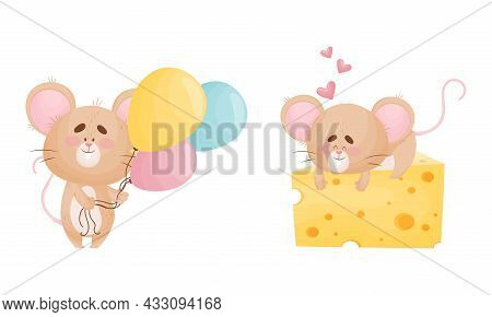 Cute Mouse Character As Small Rodent With Balloon Bunch And Lying On Cheese Slab Vector Set