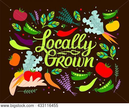 Locally Grown. Vector Illustration For Locavore Food. Vegetables With Lettering With Handwright Call