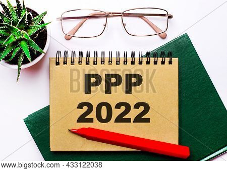 On A Light Background, Gold-framed Glasses, A Flower In A Pot, A Green Notebook, A Red Pen And A Bro