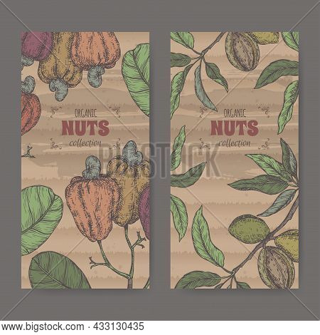 Two Labels With Prunus Dulcis Aka Almond And Anacardium Occidentale Aka Cashew Color Sketch. Culinar