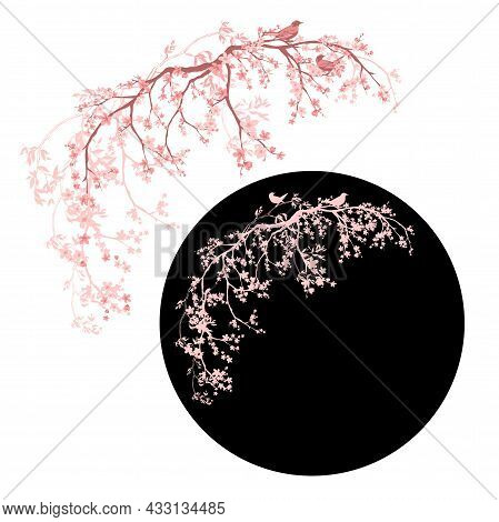 Blooming Spring Sakura Tree Branches With A Pair Of Birds Vector Silhouette And Outline Romantic Spr