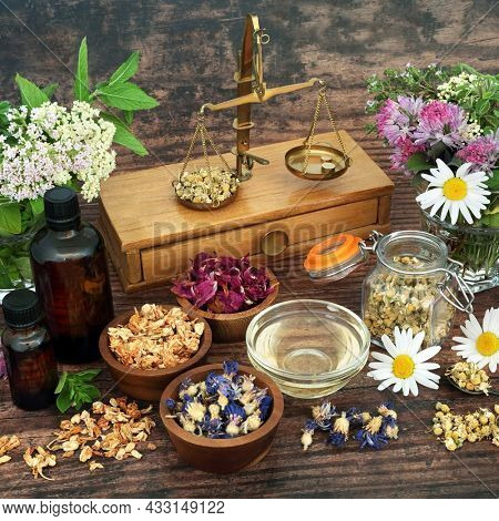 Natural herbal plant medicine with herbs, flowers, old brass scales used in alternative healing remedies. Nature health care preparation concept. Top view, flat lay on rustic wood background