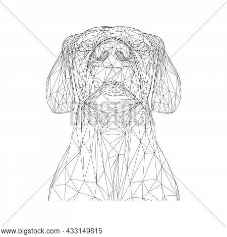 Animal Dog Pet Vector Cute Illustration Isolated White Icon. Funny Design Dog Pet Art Character Icon