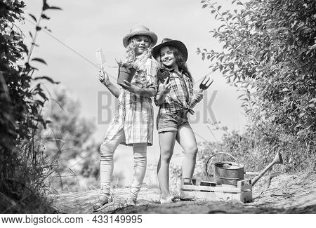 Adorable Girls In Hats Going Planting Plants. Kids Siblings Having Fun At Farm. Girls With Gardening