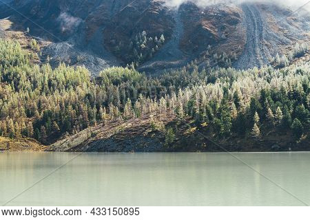 Colorful Autumn Landscape With Mountain Lake And Coniferous Forest With Hoarfrost On Trees On Mossy