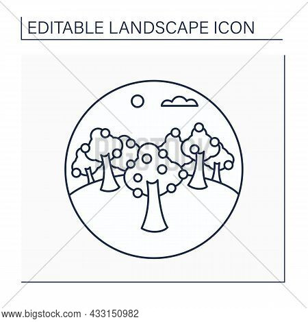 Orchard Line Icon. Grove With Trees. Forest Planting Of Fruit Trees, Nut Trees, Or Sugar Maples. Lan