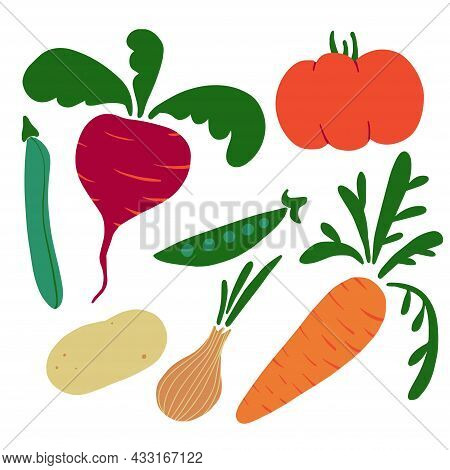 Summer And Autumn Vegetables Set Vector Illustration Isolated On White With Tomato, Carrot, Onion, P