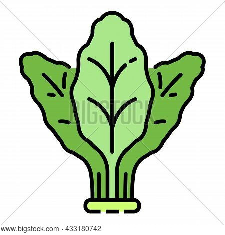 Fresh Spinach Icon. Outline Fresh Spinach Vector Icon Color Flat Isolated On White