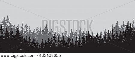 Mist Valley. Trees Silhouette. Nature Landscape. Environment Background. Decor Art. Vector Illustrat