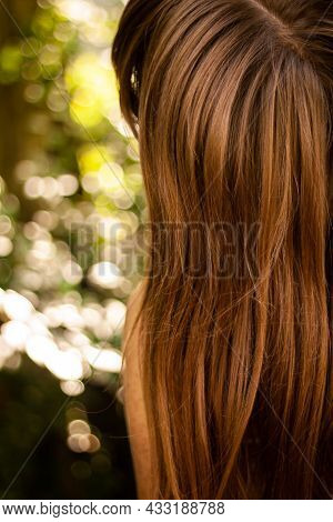 Back View Photo Of A Girl With Beautiful Long Brown Hair | Girl Showing Amazing Shiny Brown Hair Clo