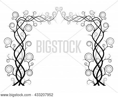 Silhouette Of Vine Isolated On White Background. Ivy Arch Vector Illustration. Dry Branch Tree. Nake