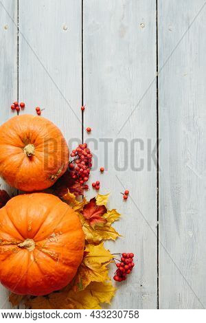 Thanksgiving Background: Pumpkins And Fallen Leaves On Wooden Background.