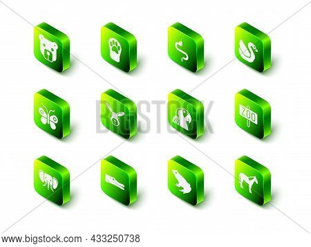 Set Paw Print, Snake, Swan Bird, Zoo Park, Horse, Macaw Parrot, Frog And Crocodile Icon. Vector