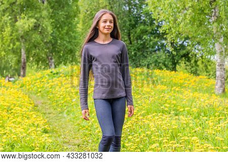 A Positive Pretty Girl Is Walking In A Birch Grove Among Blooming Yellow Dandelions.