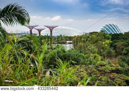SINGAPORE, SINGAPORE - MARCH 2019: The Supertree Grove at Gardens by the Bay in Singapore near Marina Bay Sands hotel
