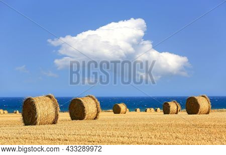 landscape with hay rolls on agricultural field in nise day