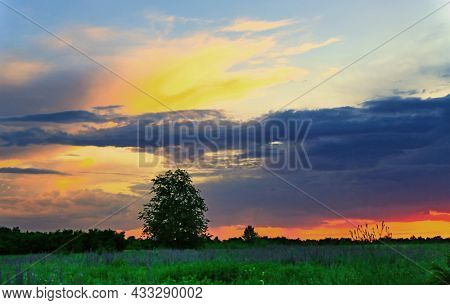 Evening landscape on green meadow in steppe