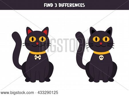 Find Three Differences Between Two Pictures Of Black Cat.