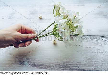 Act Of Gifting Flowers With Branch Of White Hydrangea Meaning Gratitude And Understanding In Female