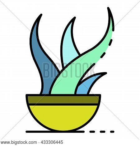 Aloe Vera Plant Pot Icon. Outline Aloe Vera Plant Pot Vector Icon Color Flat Isolated