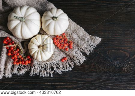 Ripe Pumpkins And Rowan Berries On A Dark Wooden Background. Concept For Thanksgiving Card Or Backgr