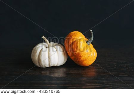 Ripe Pumpkins On A Dark Wooden Background. Minimalistic Concept For Thanksgiving Card Or Background.