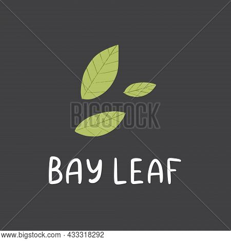 Bay Leaf With Lettering. Flat Hand Drawn Scent For Food.