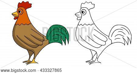Hand Drawn Cute Roaster Animal Collection Vector Illustration Isolated In A White Background