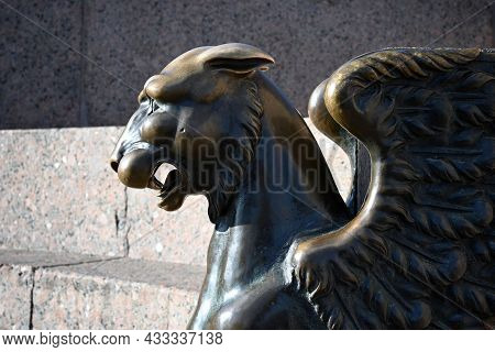 The Head Of A Bronze Griffin In Close-up Against The Background Of A Granite Bench On The Neva Emban