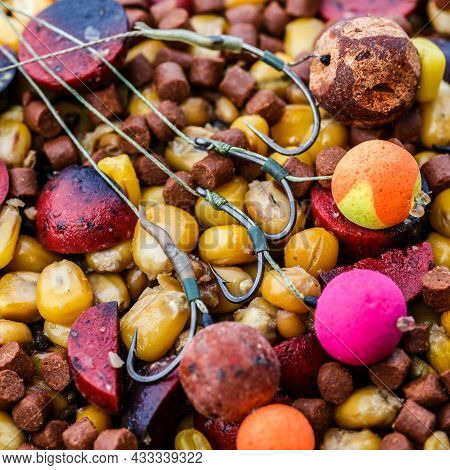 Carp Fishing Chod Rig.the Source Boilies With Fishing Hook. Fishing Rig For Carps,carp Boilies, Corn