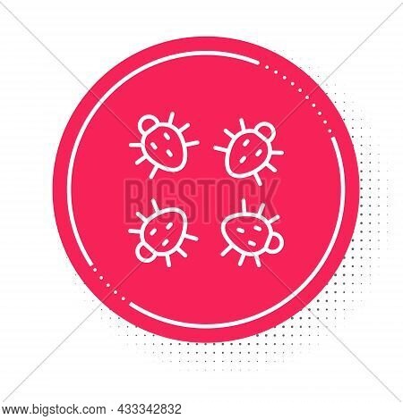 White Line Colorado Beetle Icon Isolated On White Background. Red Circle Button. Vector