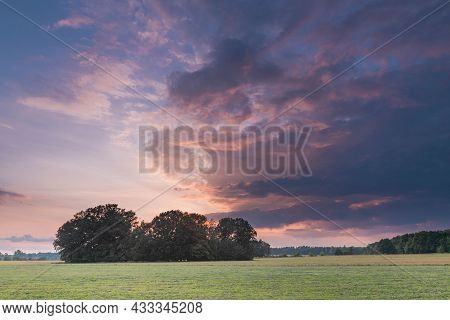 A Plain Overgrown With Grass. A Line Of Trees In The Distance. The Sky Is Partially Covered With Dar