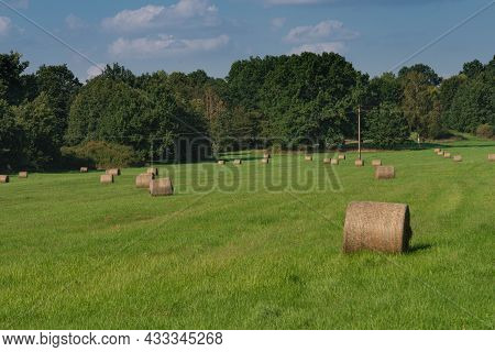A Meadow On A Vast Plain Covered With Green Grass. There Are Hay-cuts In The Meadow, There Are Bales