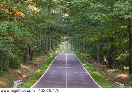 Asphalt Road Climbing Up A Small Hill. There Is A Tall, Deciduous Forest On Both Sides Of The Road.
