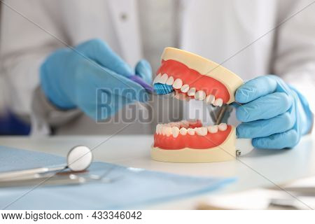 Dentist Shows On Artificial Jaw How To Properly Brush Your Teeth With Toothbrush