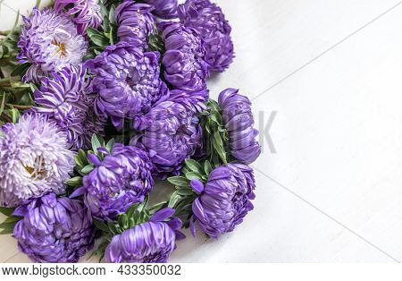Close-up Of A Bouquet Of Fresh Blue Chrysanthemums On A White Background, Copy Space.
