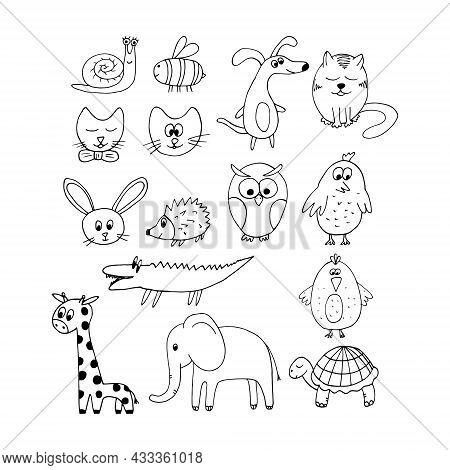 Dog, Cat, Snail, Bee, Elephant, Rabbit, Bird, Crocodile, Owl, Hedgehog, Turtle Set Hand Drawn Doodle