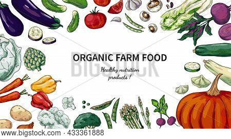 Vegetables Frame Sketch. Hand Drawn Organic Farm Food. Healthy Nutrition Products. Pumpkin And Cabba
