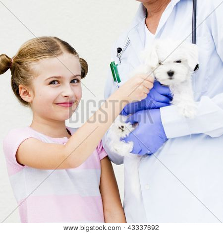 Veterinary care - lovely girl with her maltese puppy to the vet poster