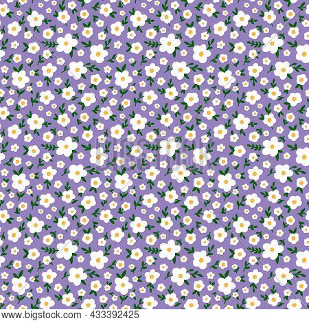 Ditsy Floral Seamless Pattern. Tiny Wildflowers, White Meadow Flowers, Scattered Daisies. Vintage Mi