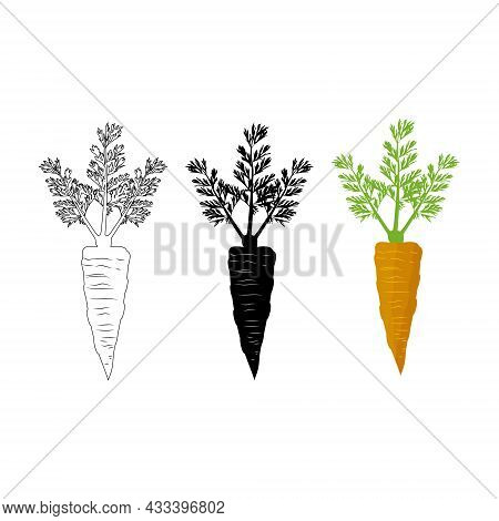 Vector Illustration Drawn In Three Styles Flat Realism, Contour, Negative On A White Background. For